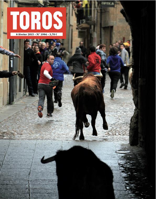 Toros n° 1994