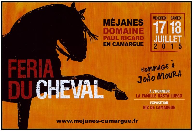 MEJANES_FeriaCheval2015_FLY_002