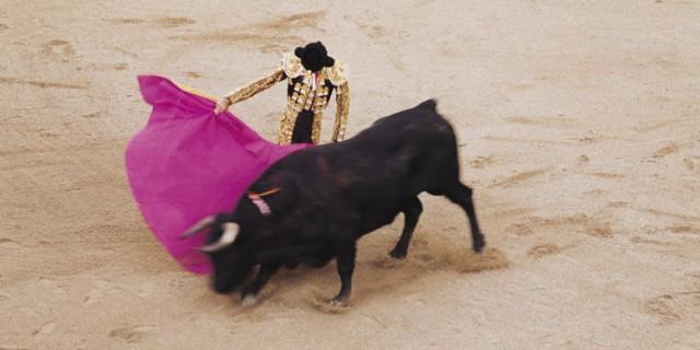 vous-etes-pour-ou-contre-la-corrida-donnez-nous-votre-avis
