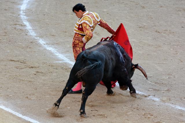 Fortes Julio de la Puerta Madrid 22052016 Photo © Ferdinand DE MARCHI