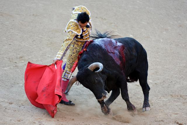 El Cid Buenavista Madrid 22052016 Photo © Ferdinand DE MARCHI
