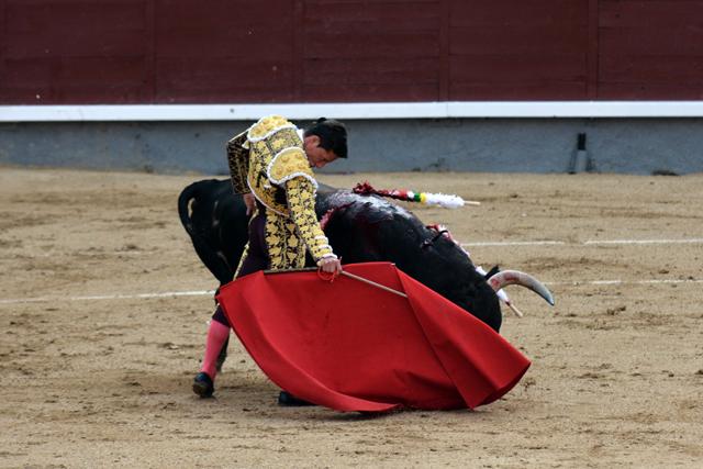 Diego Urdiales Alcurrucen Madrid 24052016 Photo © Ferdinand DE MARCHI