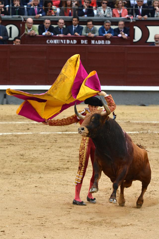 Roca Rey Alcurrucen Madrid 24052016 Photo © Ferdinand DE MARCHI