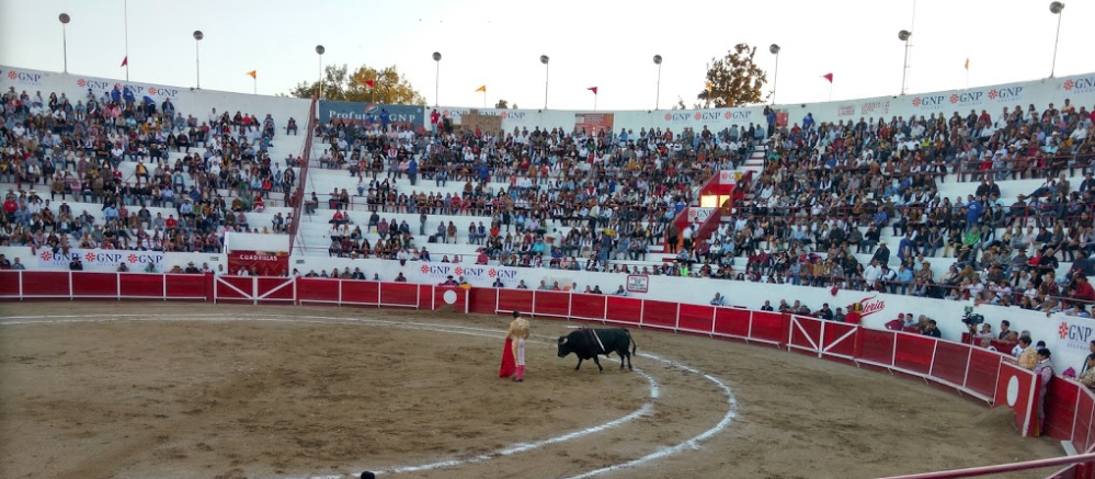 Leon Mexique