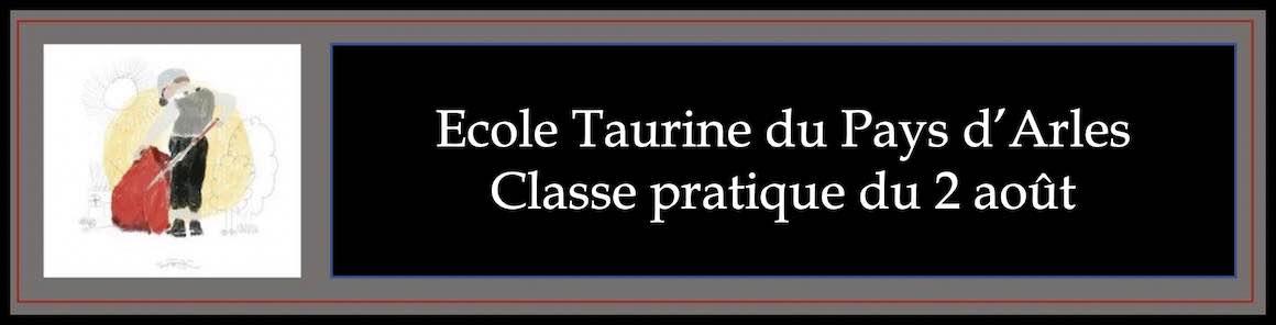 Ecole Taurine du Pays d'Arles. Classe pratique du 2 août.