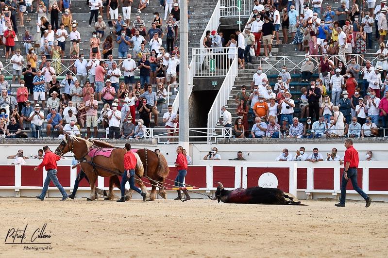 Béziers-15 août 2020-1-64