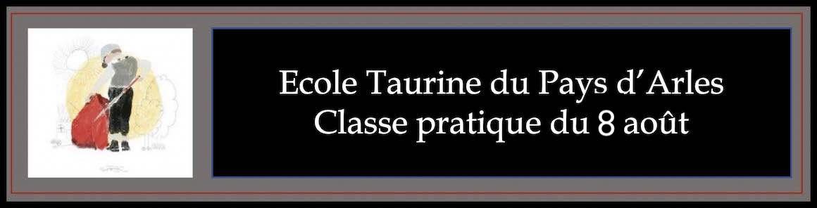 Ecole Taurine du Pays d'Arles. Classe pratique du 8 août.