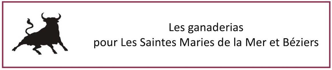Les ganaderias pour Les Saintes Maries de la Mer et Béziers.