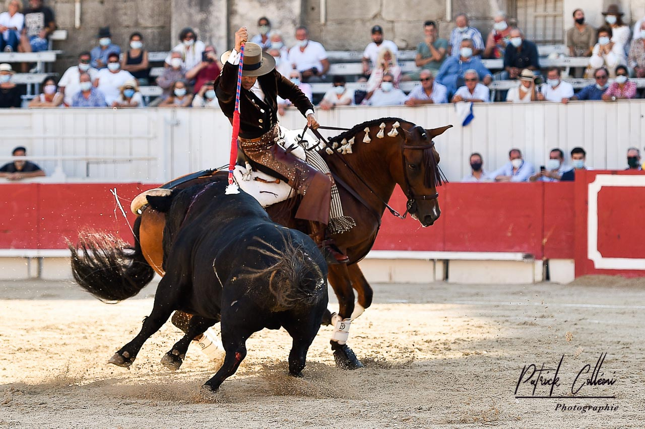 Arles-Ventura-1-3