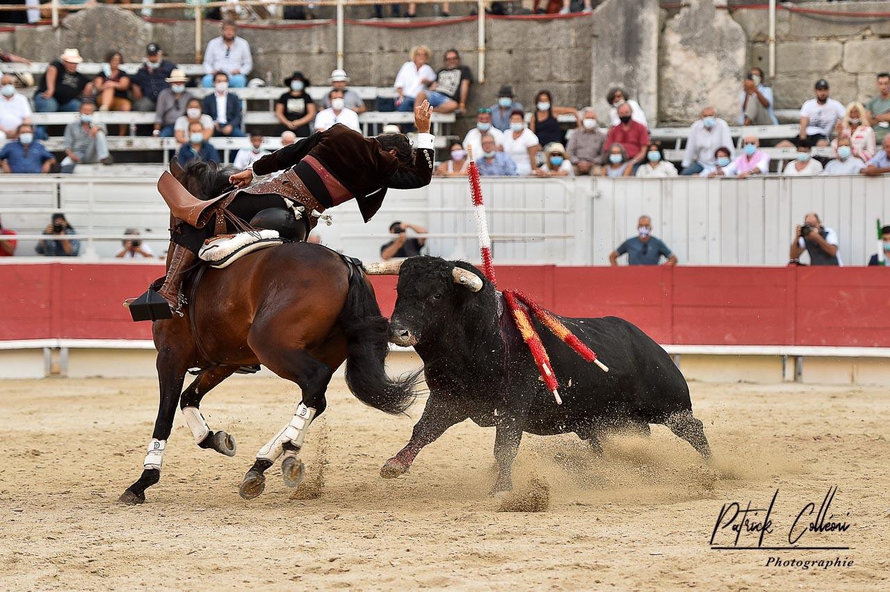 Arles-Ventura-1-4